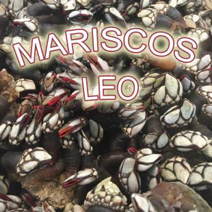 MARISCOS LEO