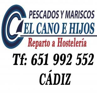 EL CANO DE CADIZ